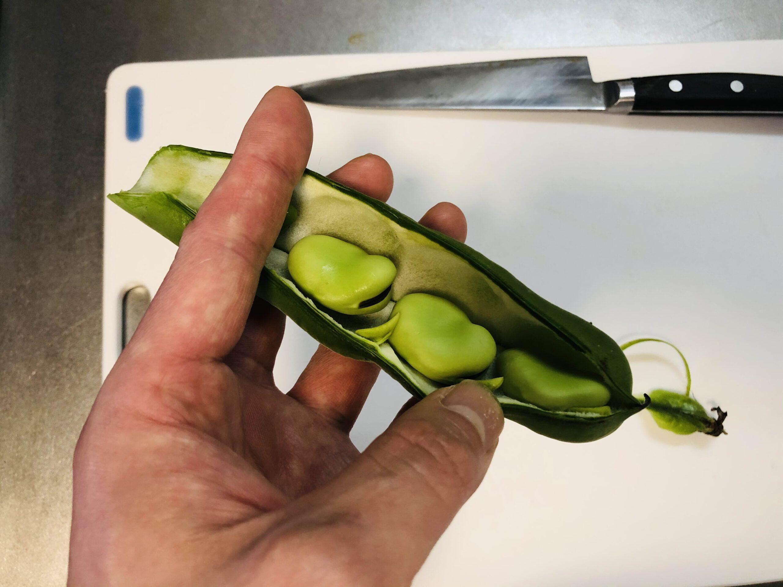 そら豆の鞘を割って豆が出てきた画像です