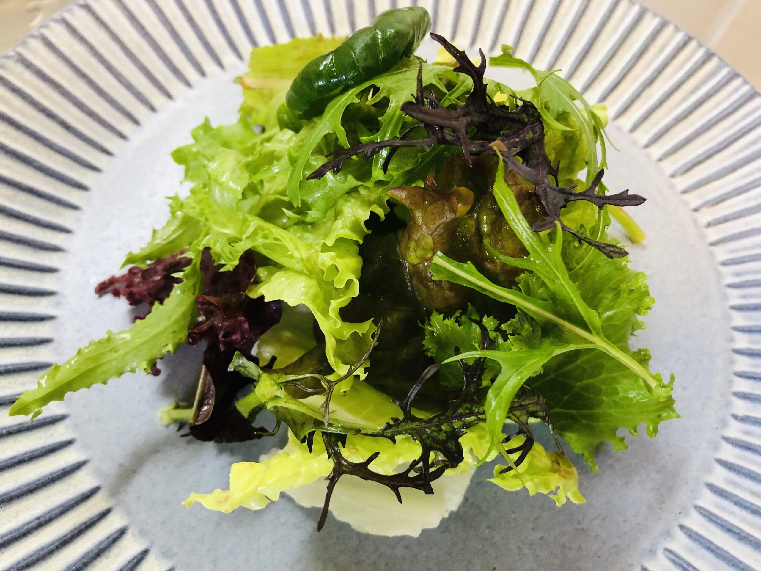 サラダの完成画像です。