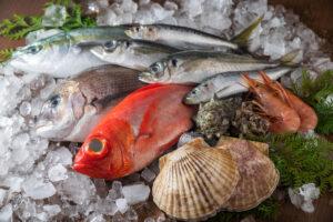魚介の画像です